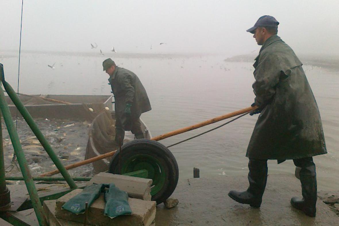Rybáři lovili pomocí obřích sítí