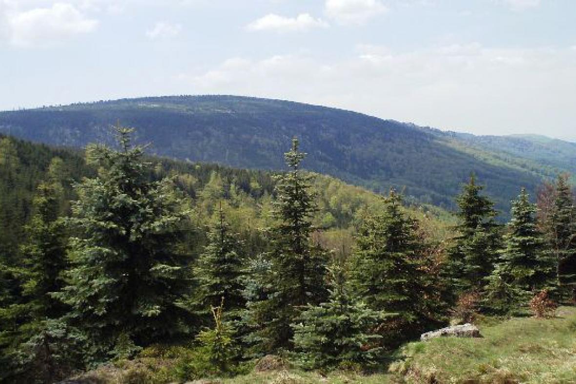 Smědavská hora