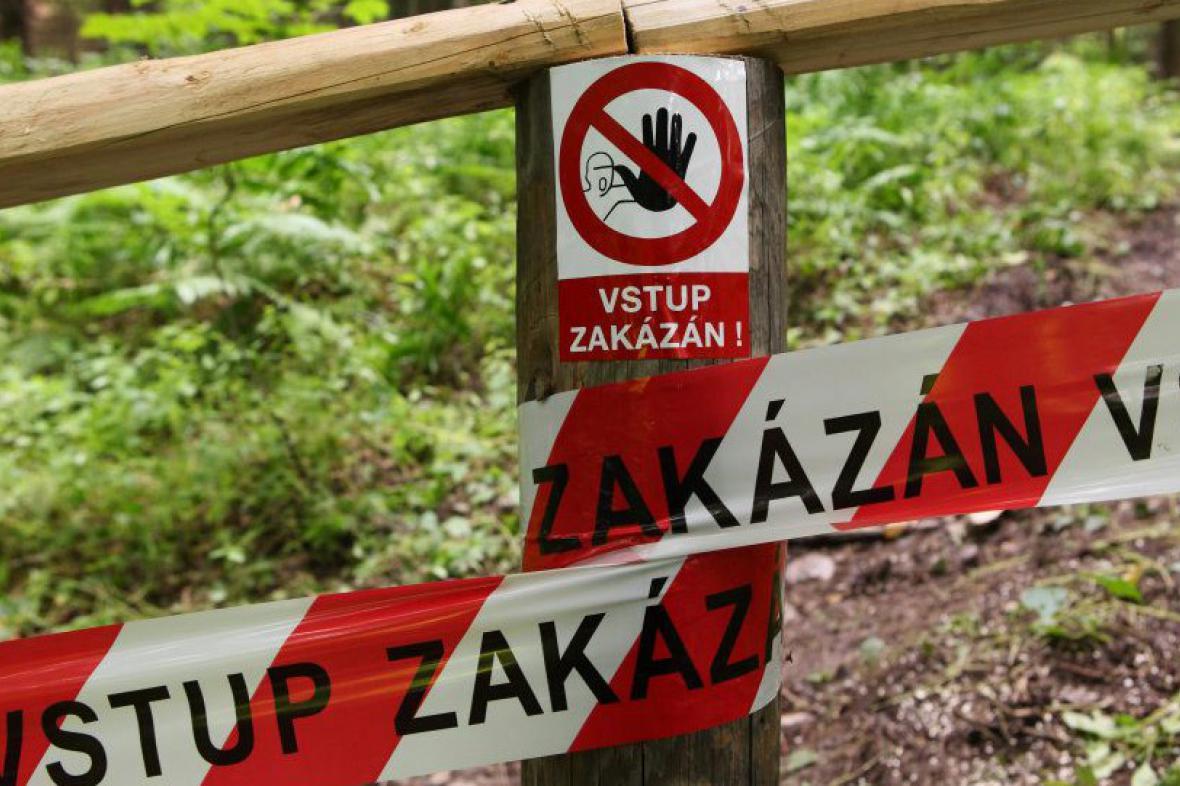 Zákaz vstupu do lesa