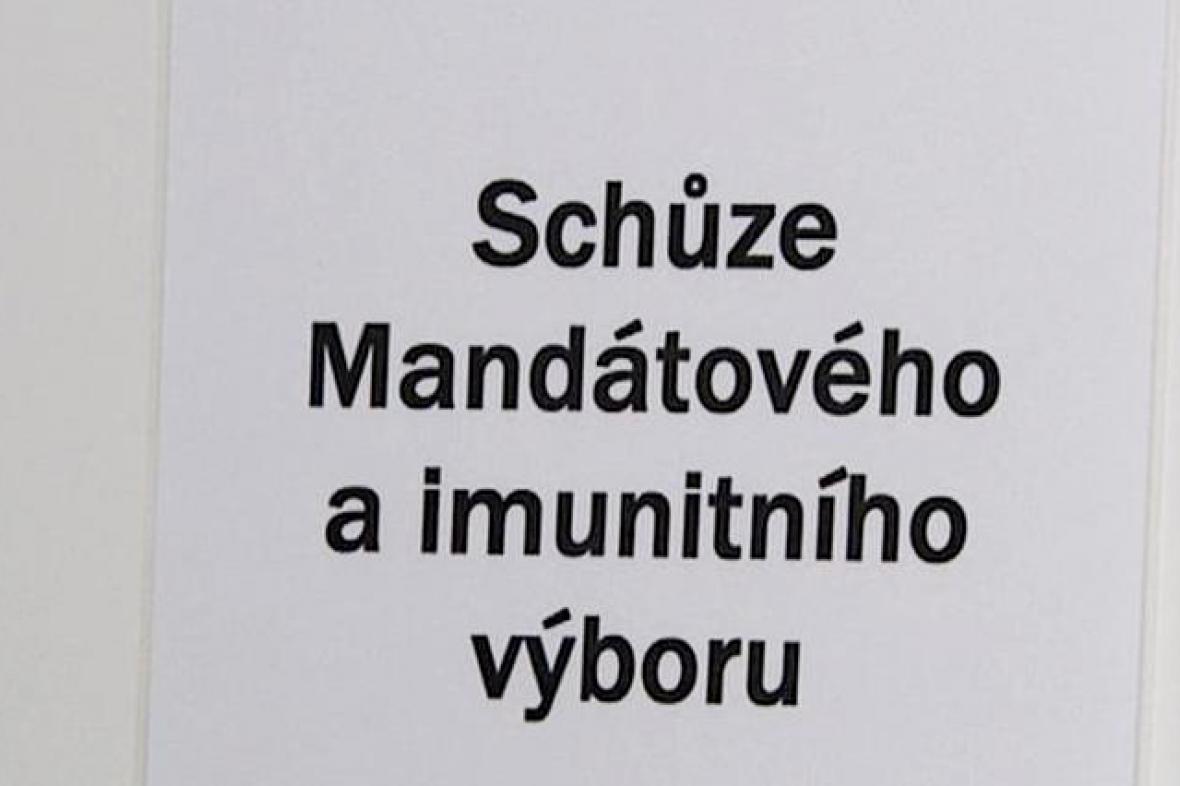 Mandátový a imunitní výbor