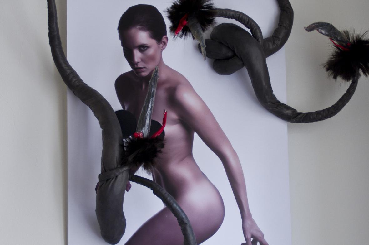 Natálie Nová / Gorgona Medusa (výřez)