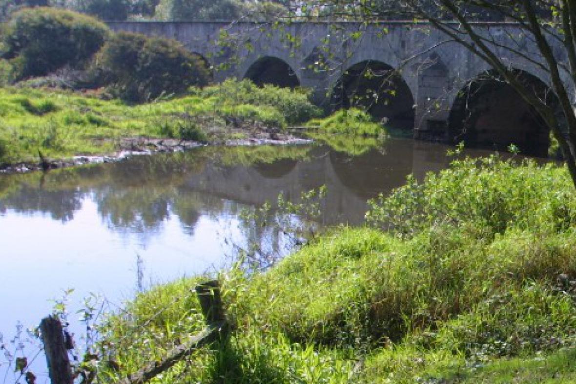 Řeka Lužnice