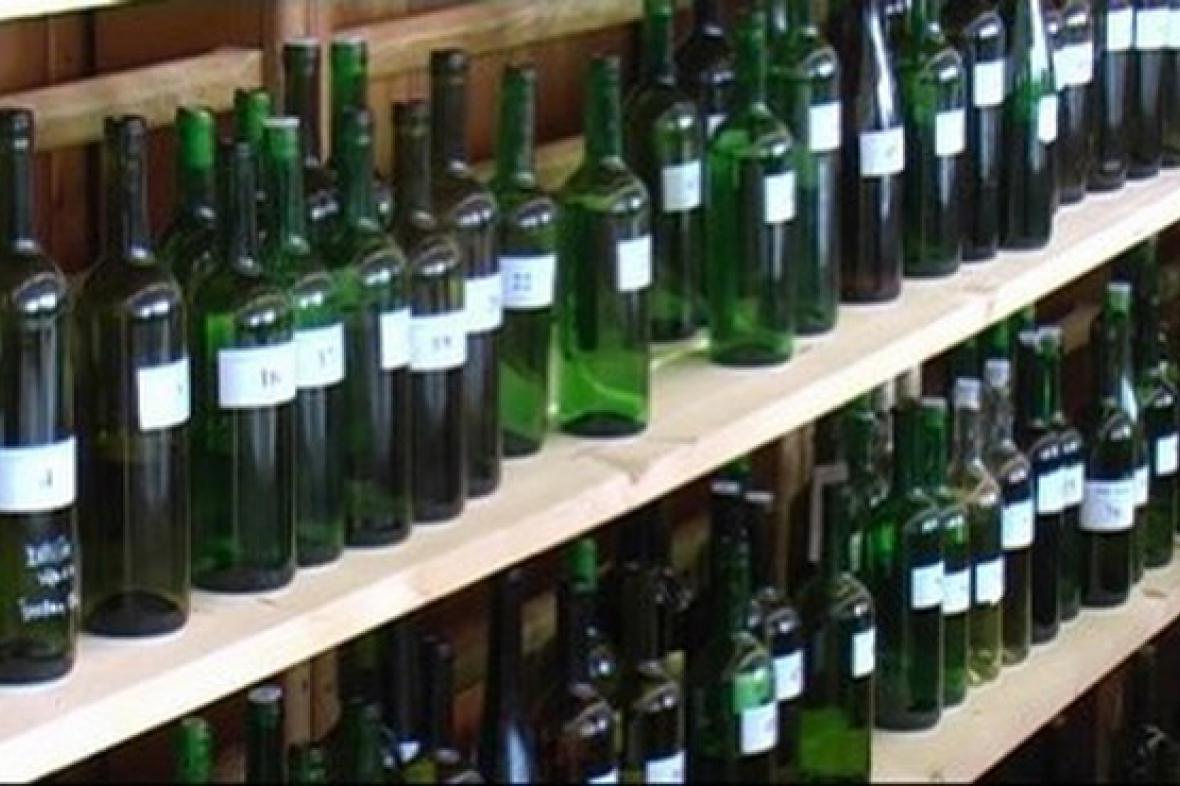 Výstava s koštem vín v Traplicích