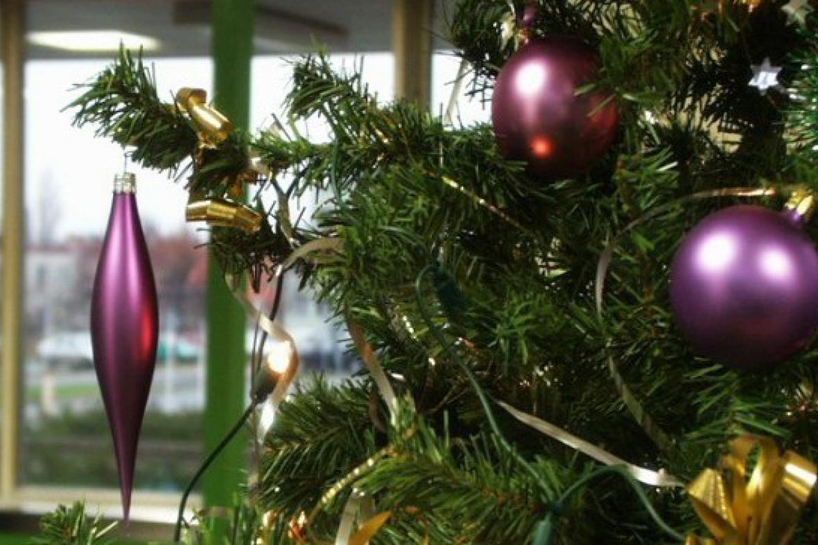 Vánoční stromek