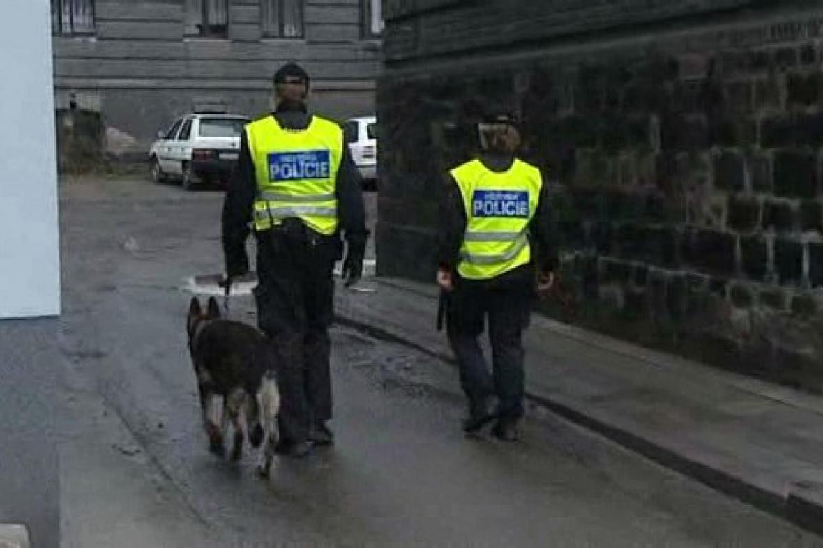 Policejní hlídka v ulicích