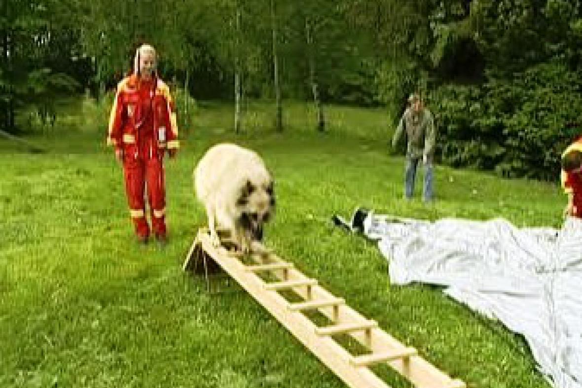 Zkoušky psovodů na Poháru výcvikářů