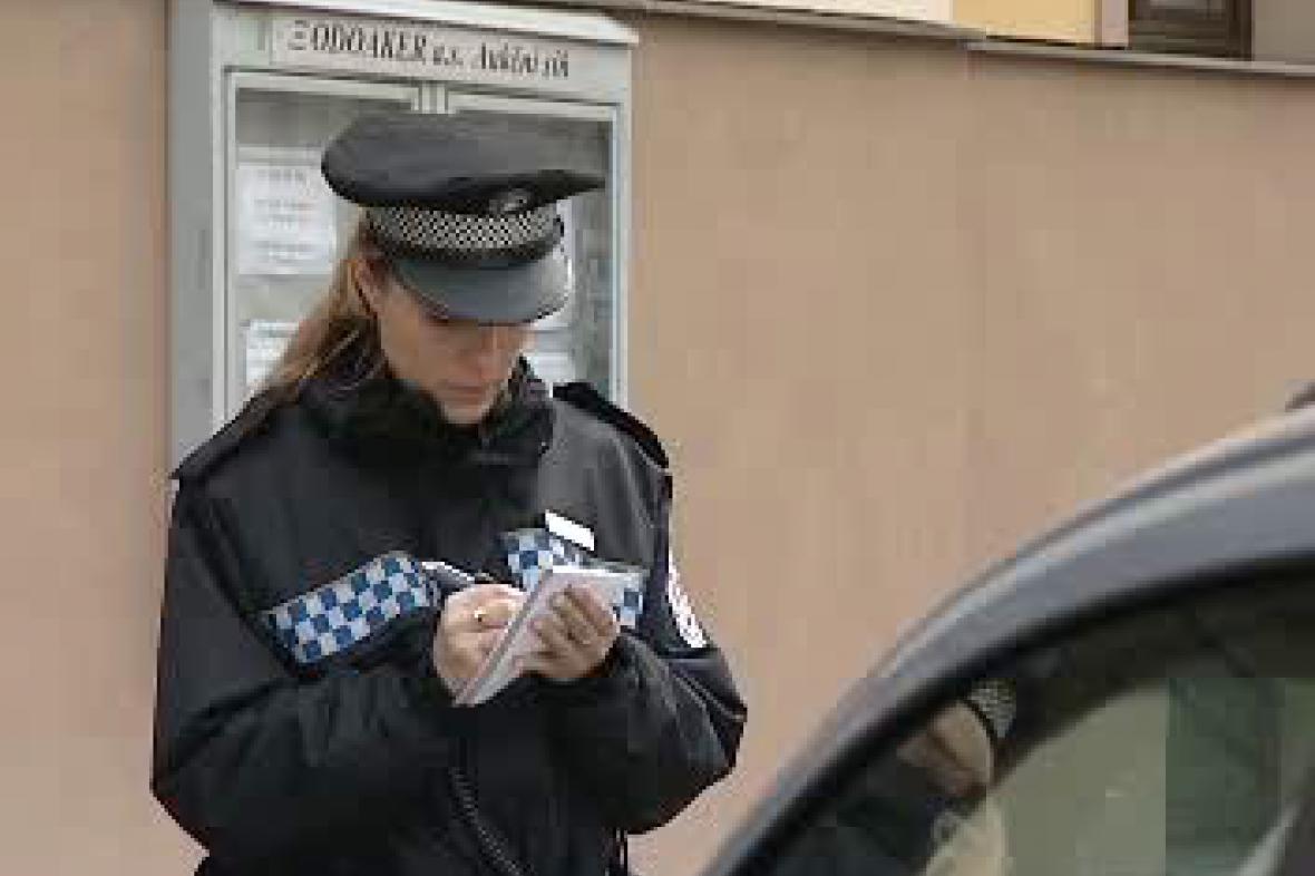 Policistka