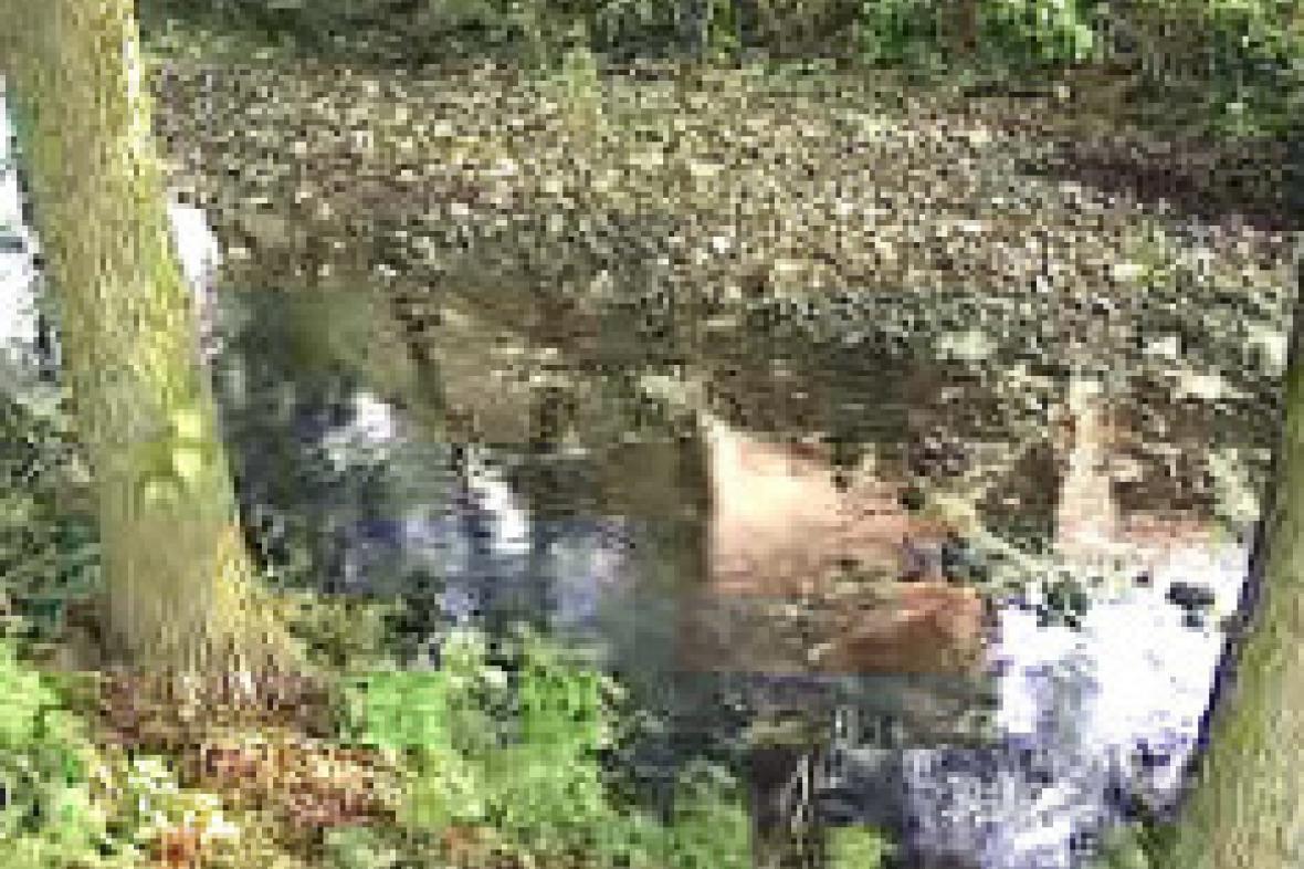 Vysychající řeka