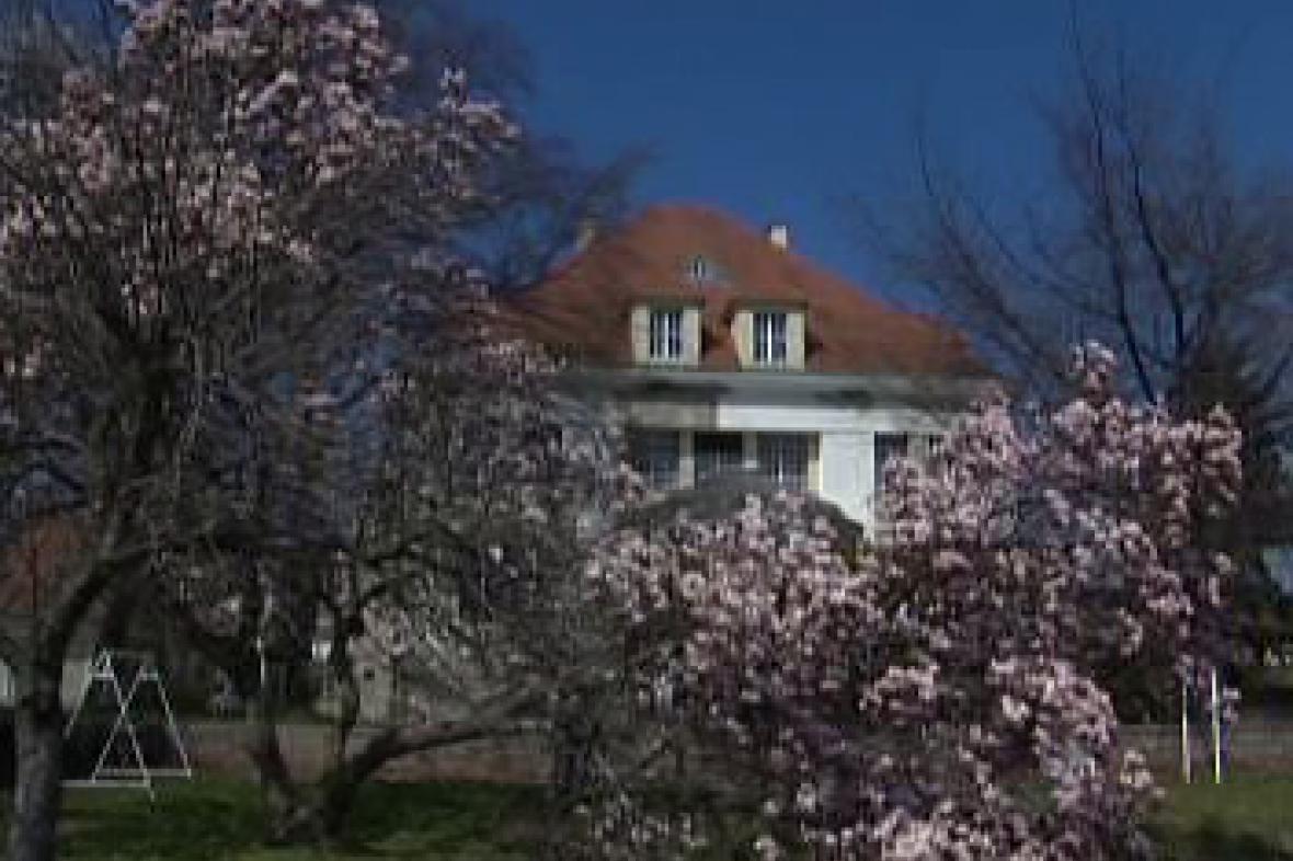 Vila v Krnově