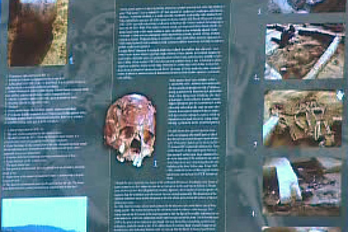 Archeologické nálezy v Dolních Věstonicích