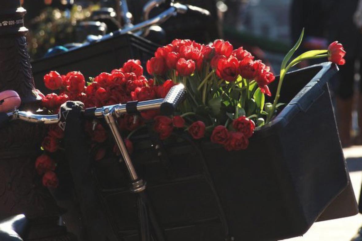 Cyklistika v Amsterdamu