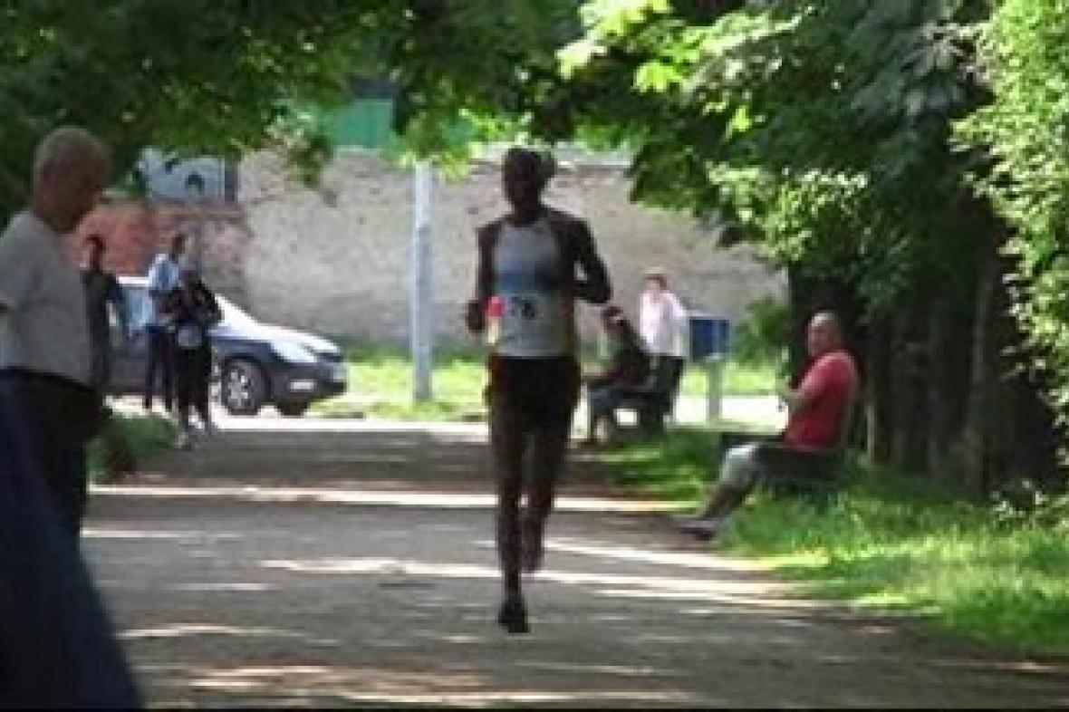 Mezinárodní festival v běhu