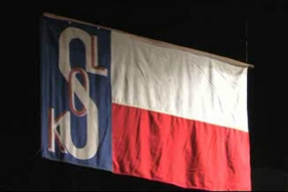 Sokolská vlajka