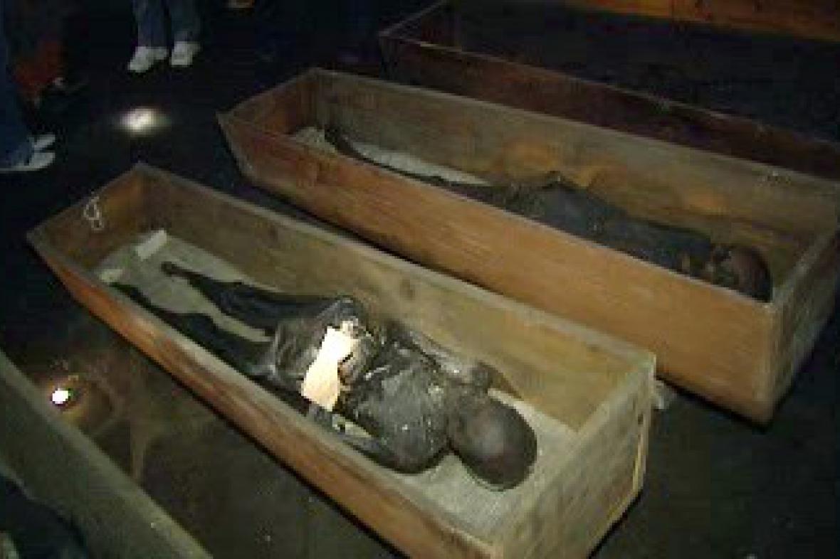 Vamberecké mumie