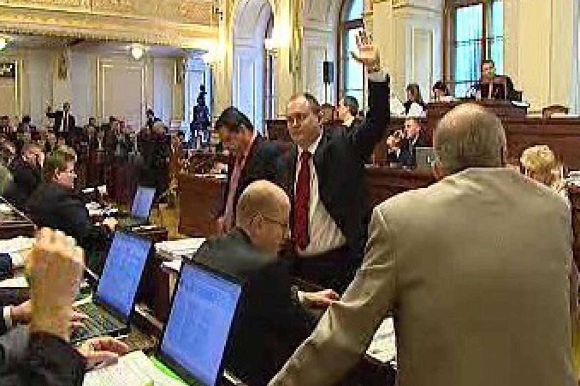 Hlasování v Poslanecké sněmovně