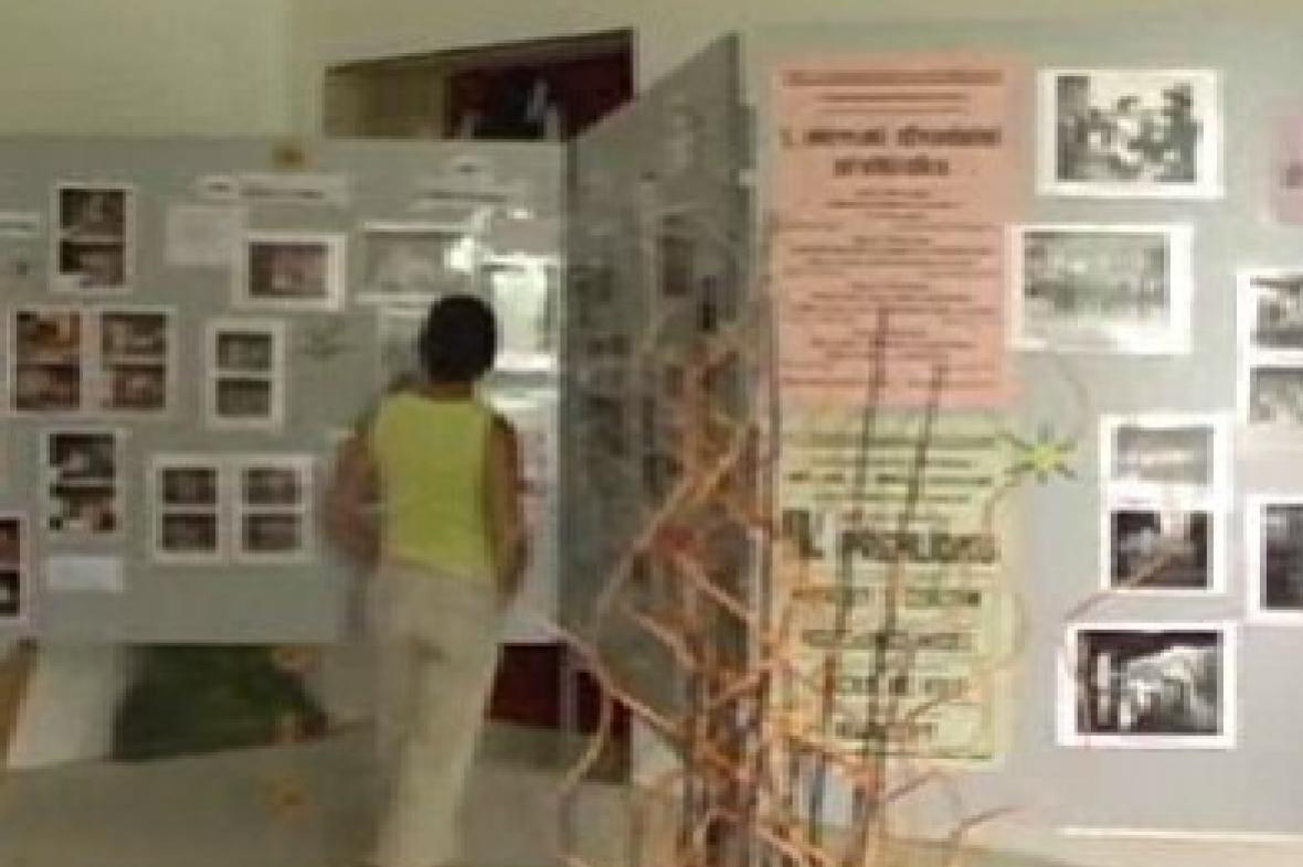 Výstava k šedesátinám ochotníků v Poběžovicích
