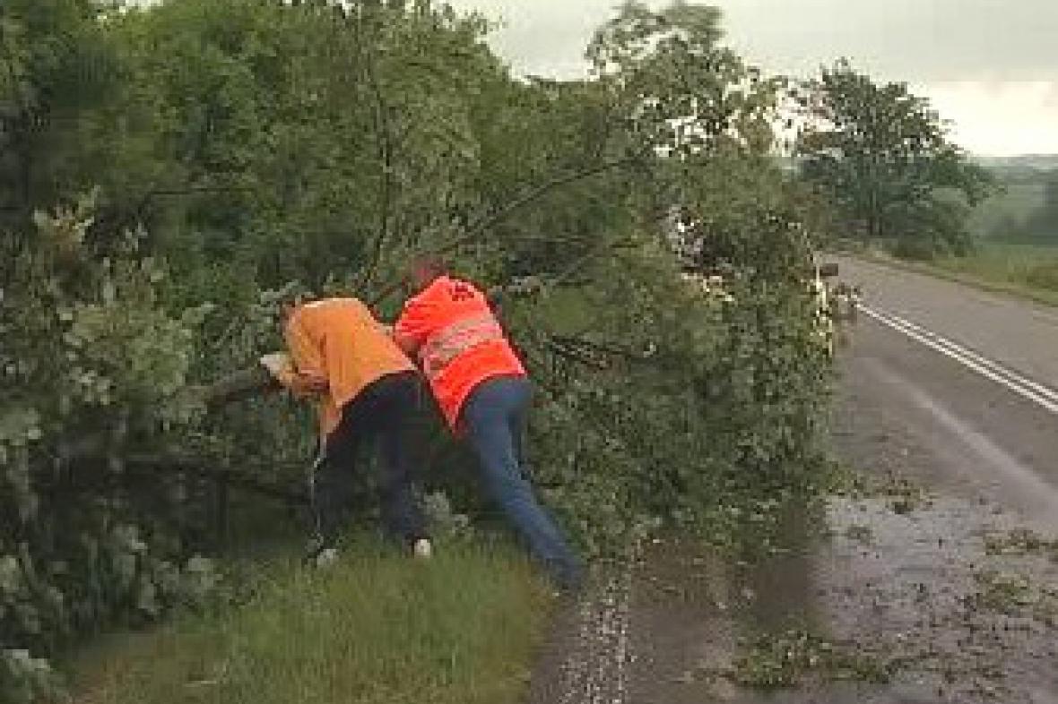 Odklízení stromu ze silnice