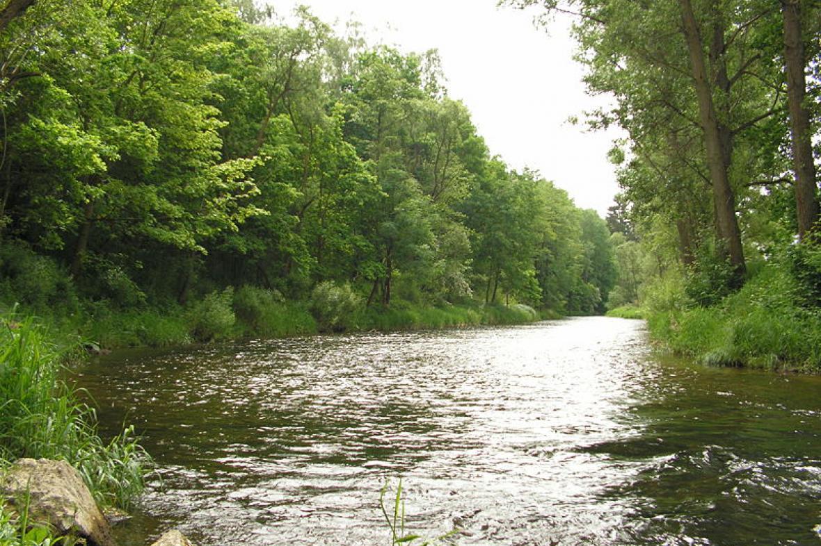 Řeka Želivka