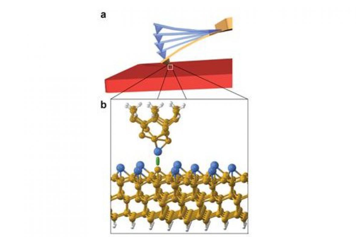 Detekci jednotlivých atomů umožňuje chemická vazba mezi povrchem a atomem hrotu