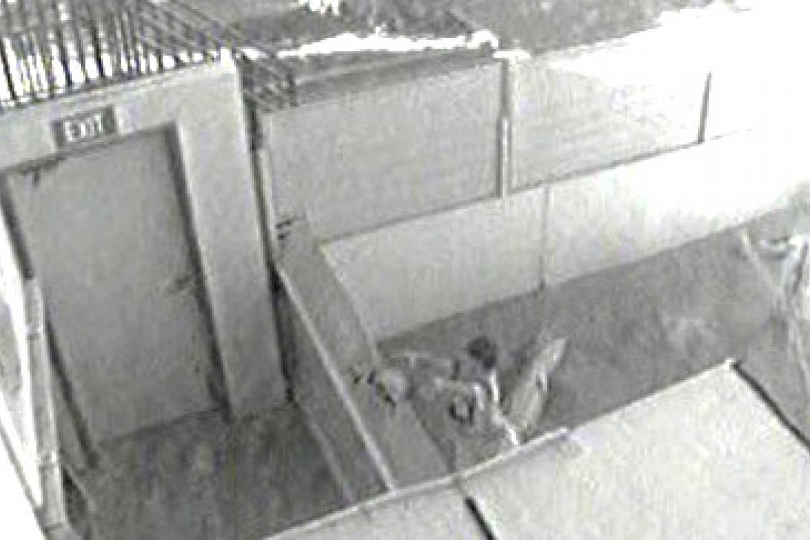 Chlapec hází želvu krokodýlu Terrymu