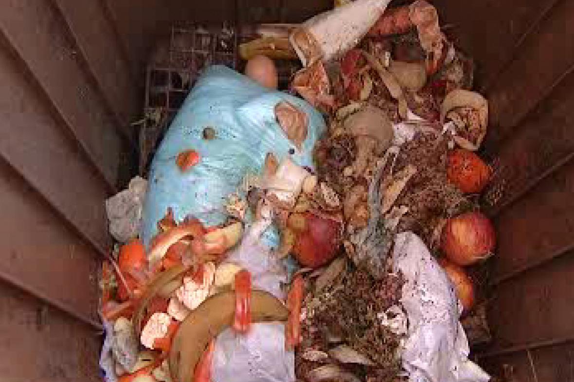 Biologický odpad