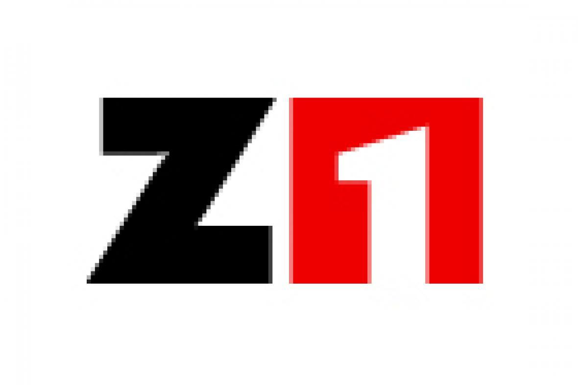 Logo Z1