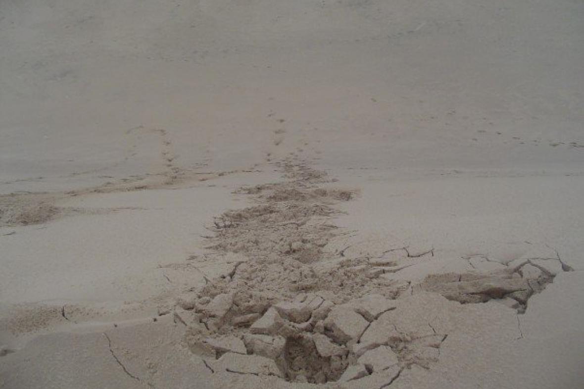 Migrující duna