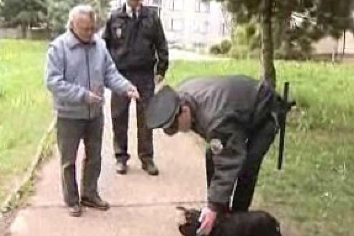 Majitel psa