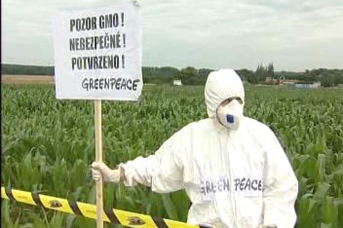 Protest proti kukuřici