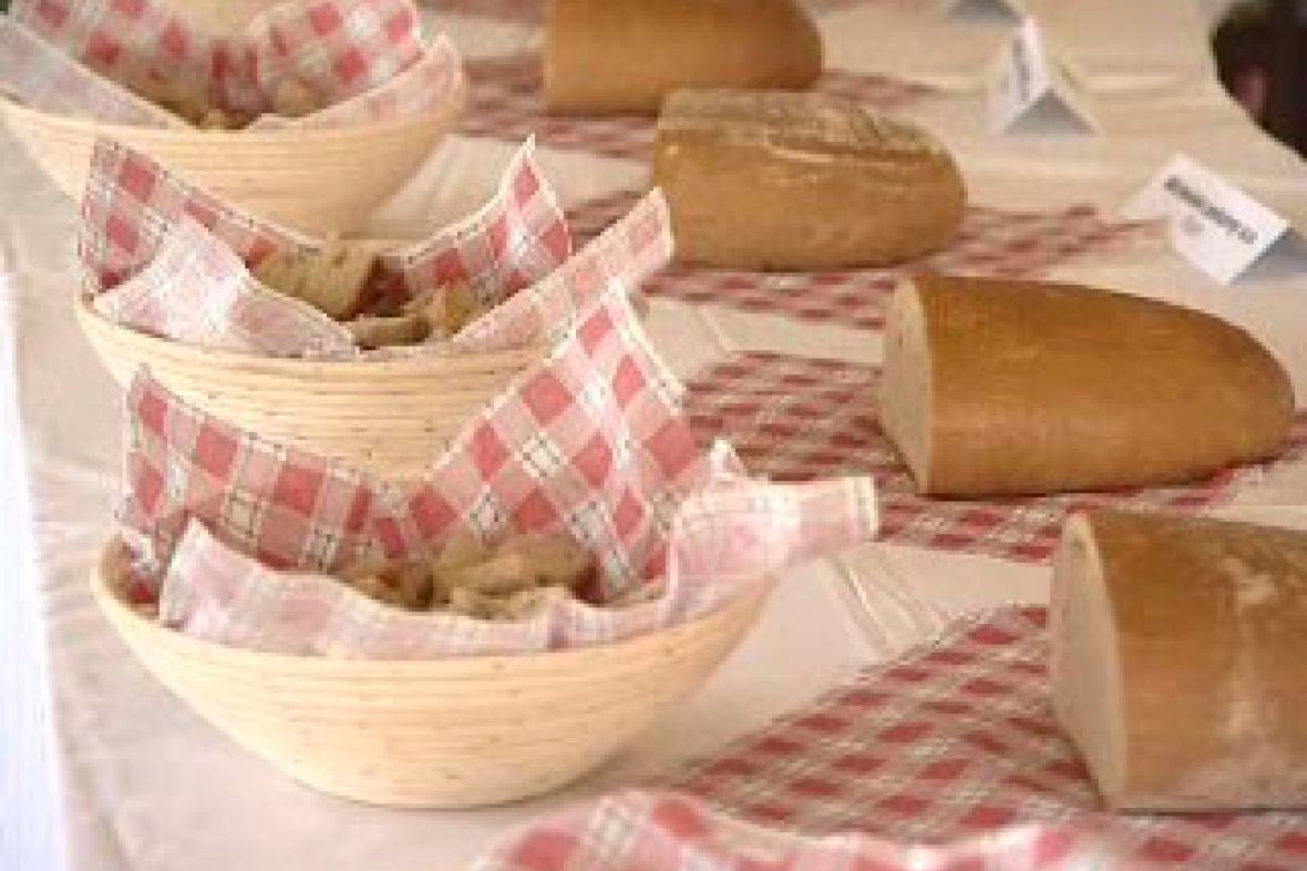 Dny chleba