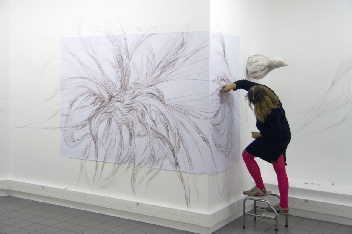 Filomena Borecká / Re-liance, 2010