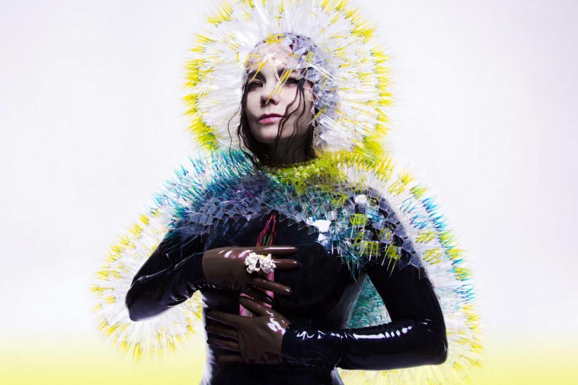 Björk / Vulnicura