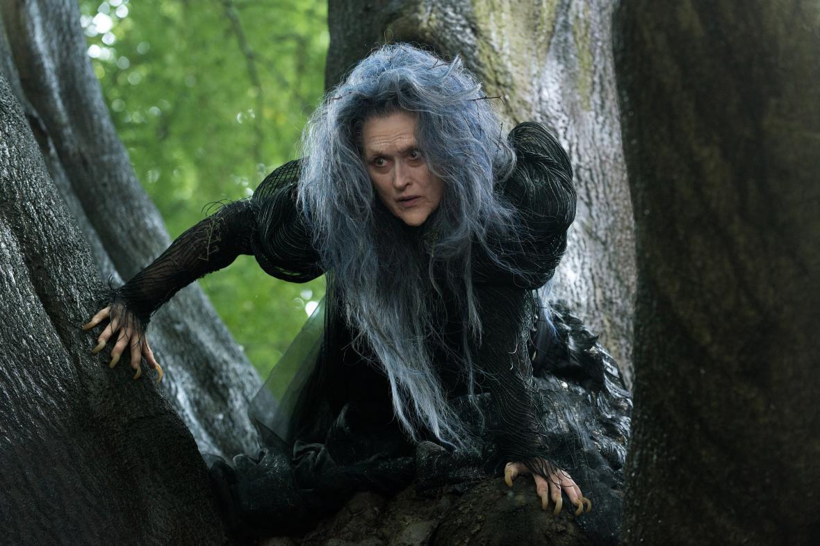 Čarovný les (Meryl Streep)