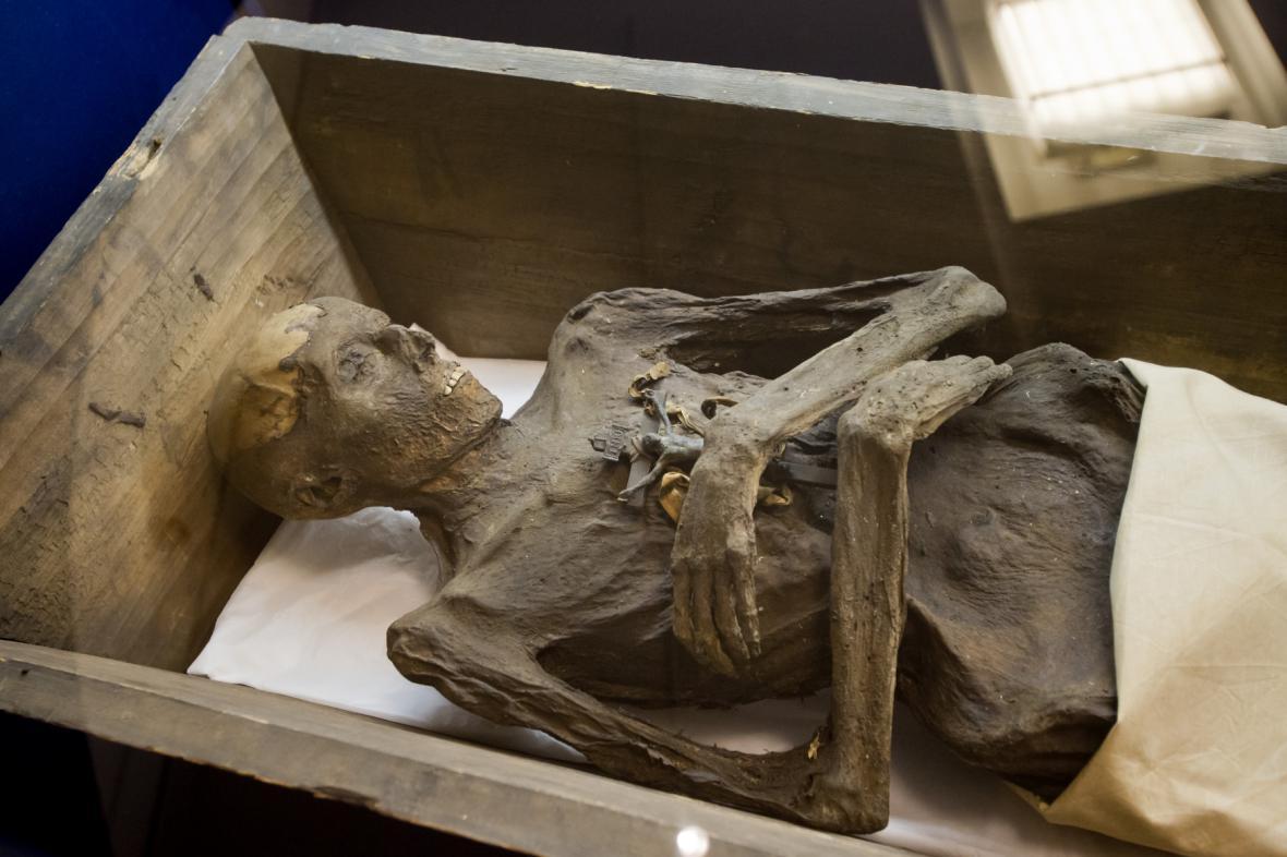 Z výstavy Smrt