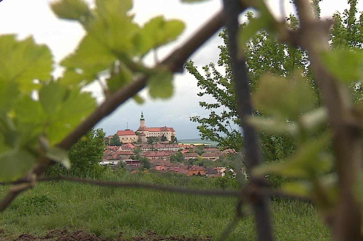 Agroturistice se na jižní Moravě daří