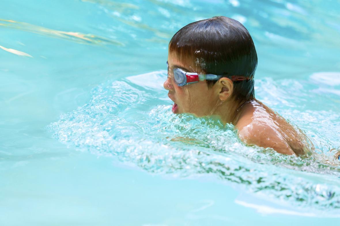 Plavání ve školách