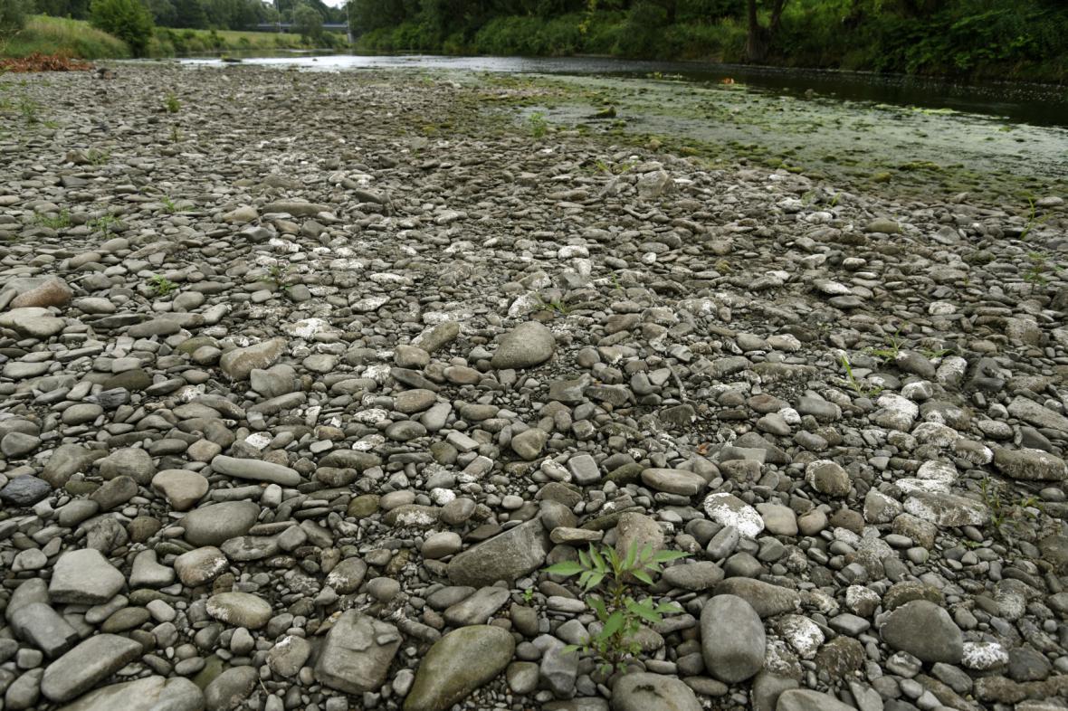Nedostatek vody v řece Olši