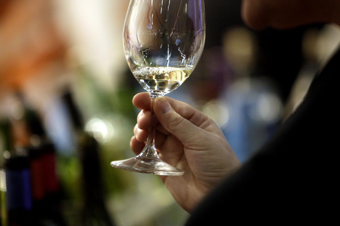 Začaly dvě nejznámější vinobraní