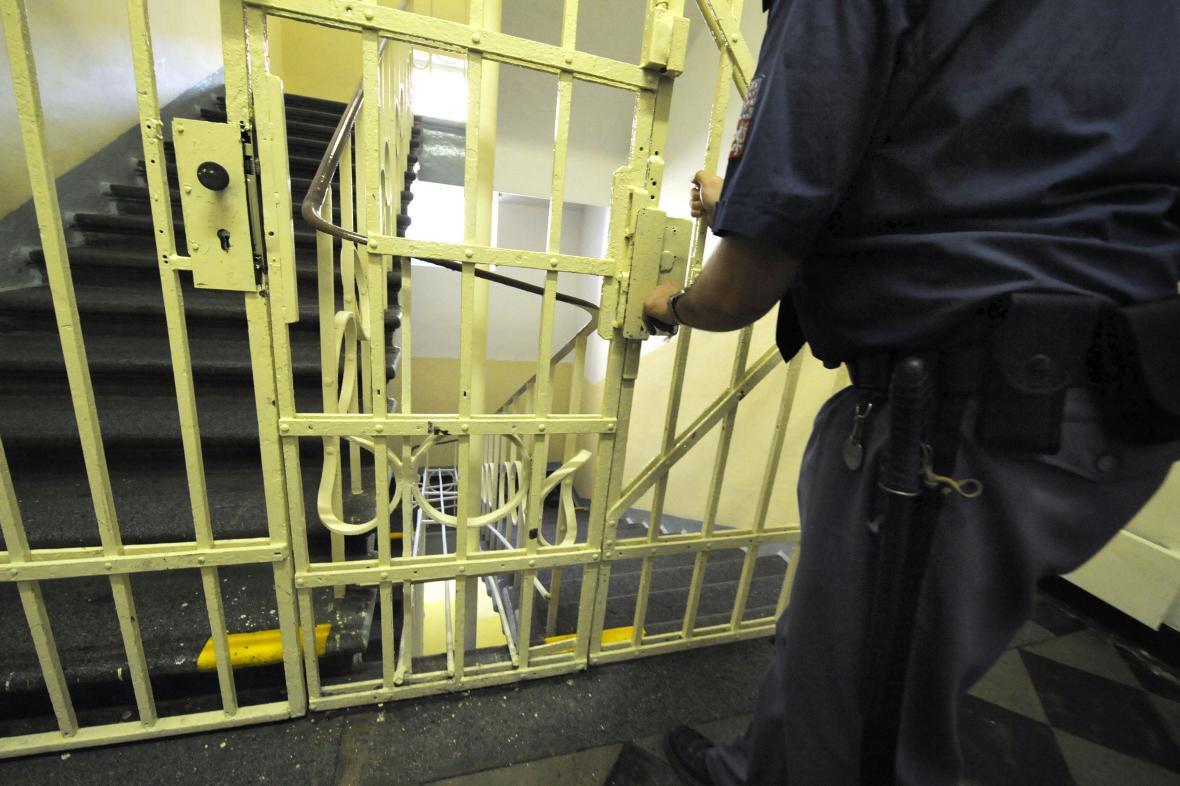 V českých věznicích chybí místa pro další odsouzené