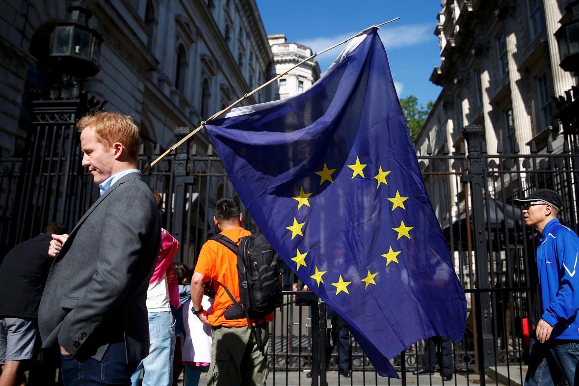 Zastánce EU v ulicích Londýna