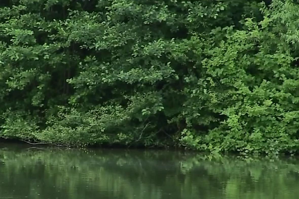 Krnovské rybníky