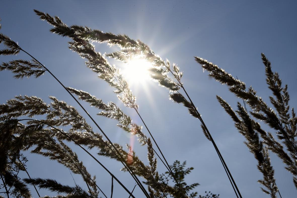 Slunečno