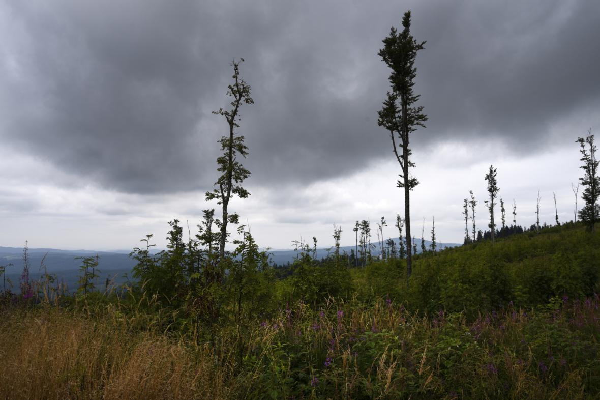 Bouře nad Šumavou