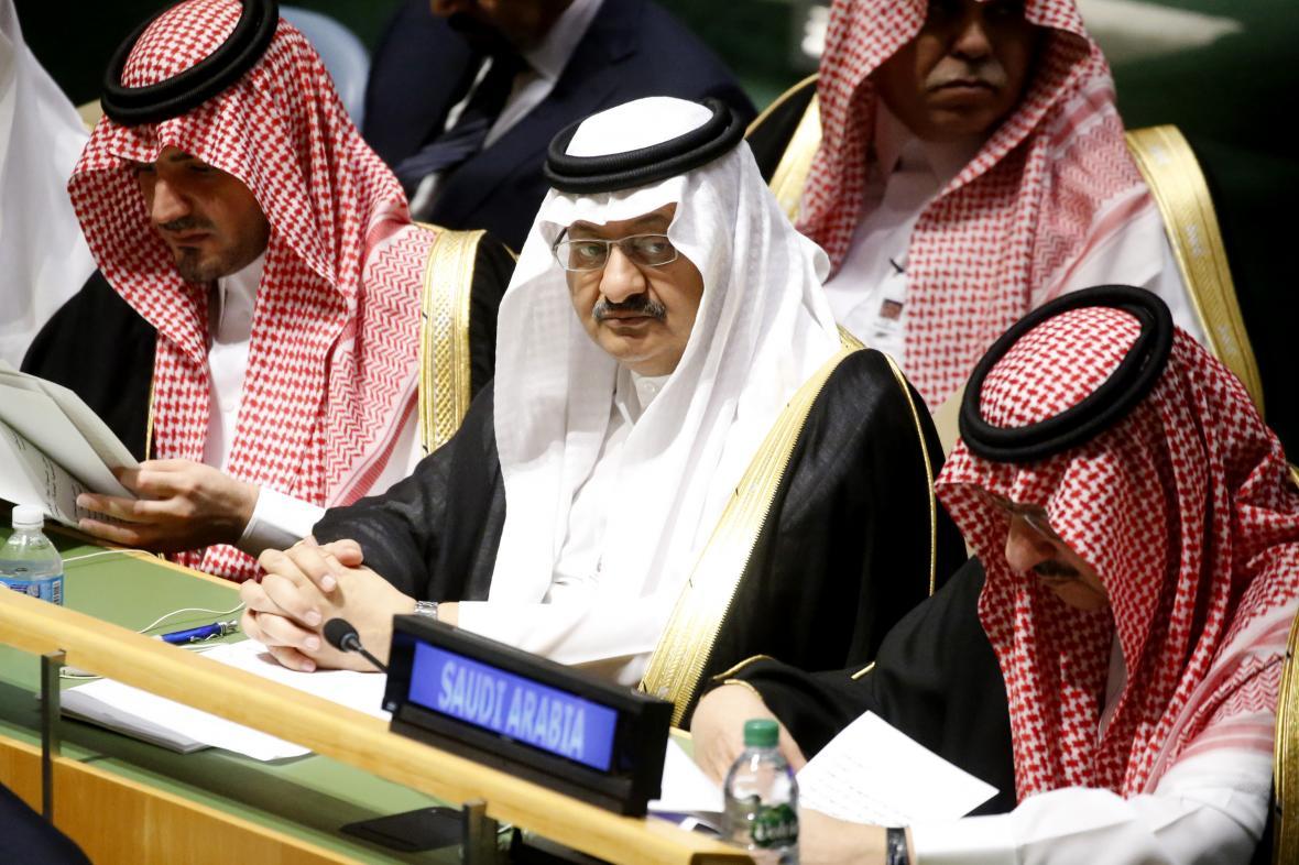 Saúdská delegace