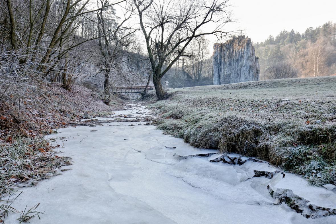 Moravský kras přijde o několik desítek stromů