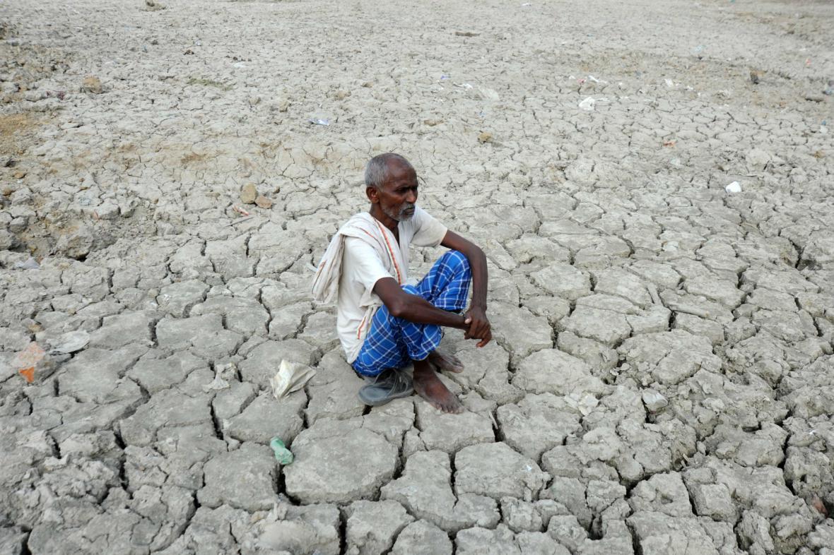 Zemědělství v Indii