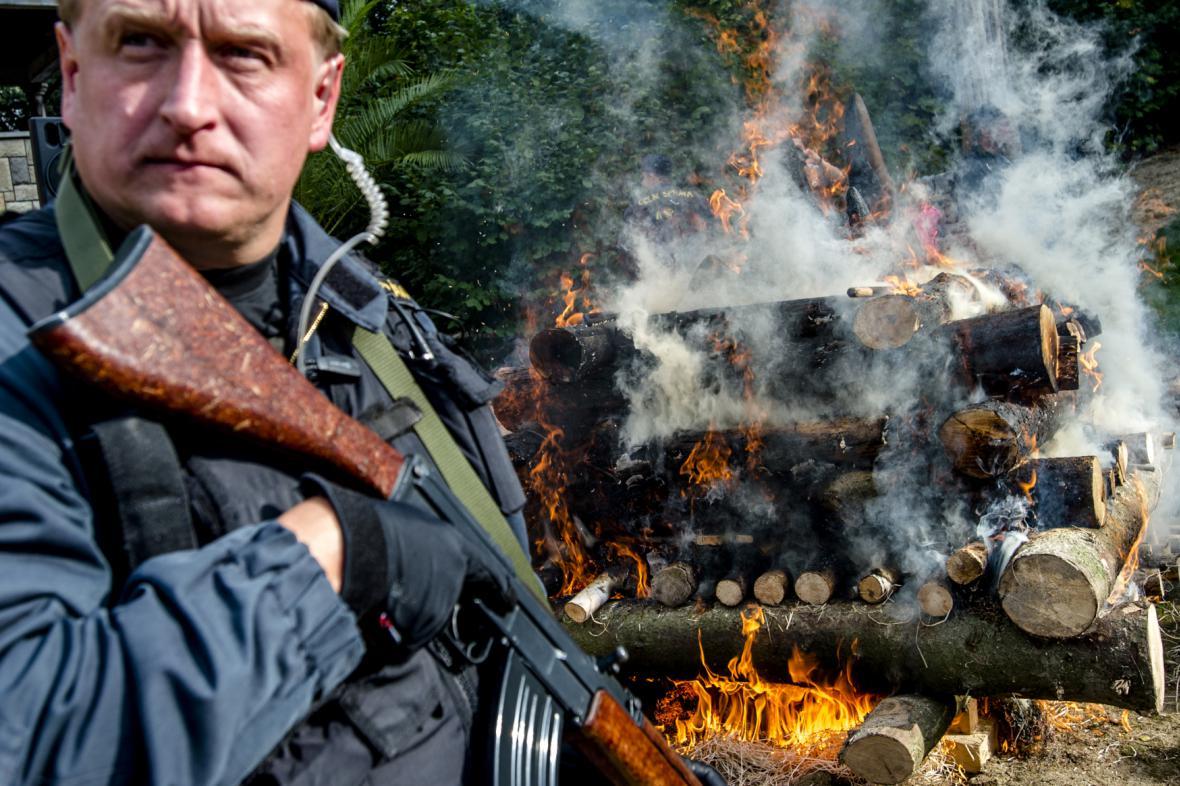 Pálení rohů nosorožců ve Dvoře Králové nad Labem