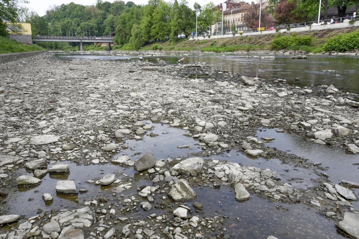 Téměř vyschlá řeka Olše v Českém Těšíně