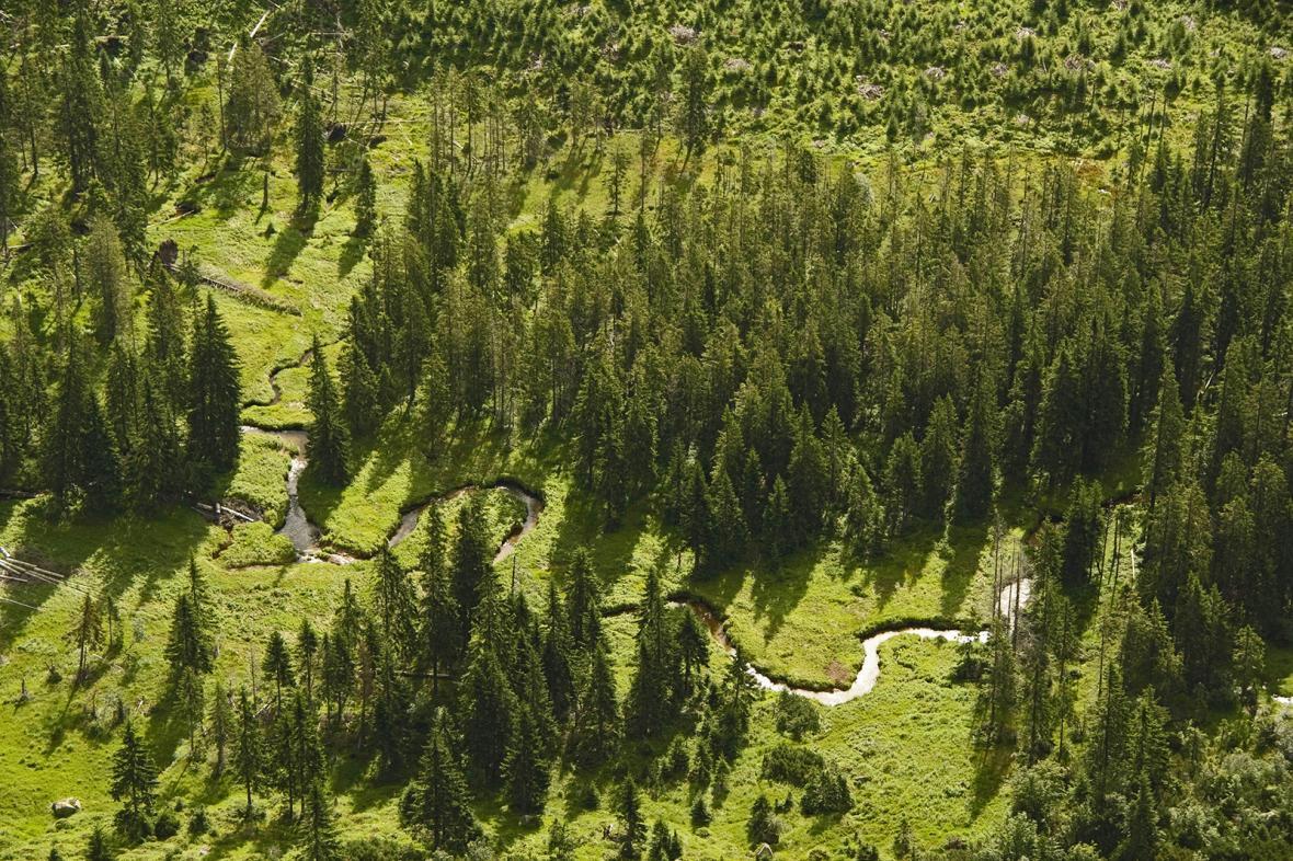 Krkonošský národní park slaví 55 let