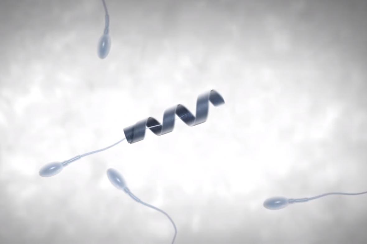 Spermbot